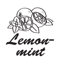 Hookah Cream Lemon mint