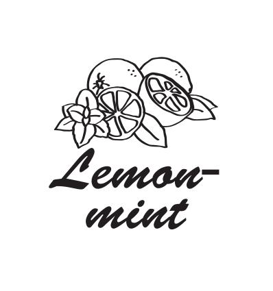 Hookah Cream Lemon mint