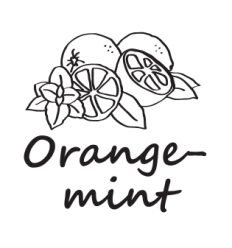 Hookah Cream Orange mint