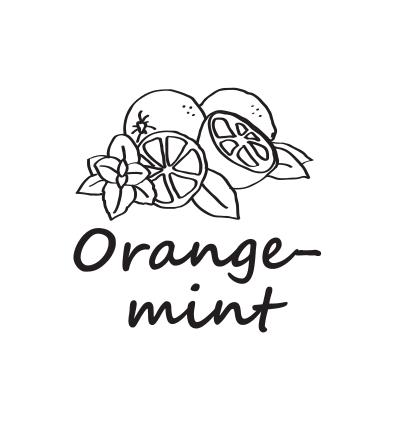 Hookah Cream Orange mint